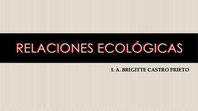 RELACIONES ECOLÓGICASRELACIONES ECOLÓGICAS I. A. BRIGITTE CASTRO PRIETO