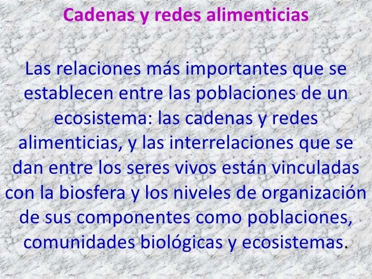 Cadenas y redes alimenticias   Las relaciones más importantes que se   establecen entre las poblaciones de un       ecosis...