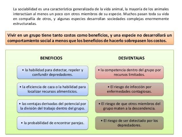Relaciones intraespecíficas Slide 2