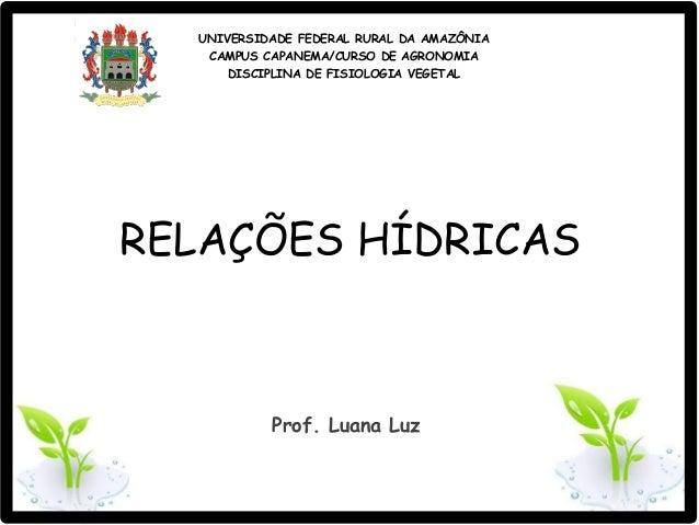 UNIVERSIDADE FEDERAL RURAL DA AMAZÔNIA CAMPUS CAPANEMA/CURSO DE AGRONOMIA DISCIPLINA DE FISIOLOGIA VEGETAL RELAÇÕES HÍDRIC...