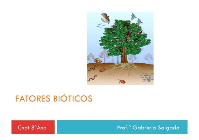 FATORES BIÓTICOSCnat 8ºAno         Prof.ª Gabriela Salgado