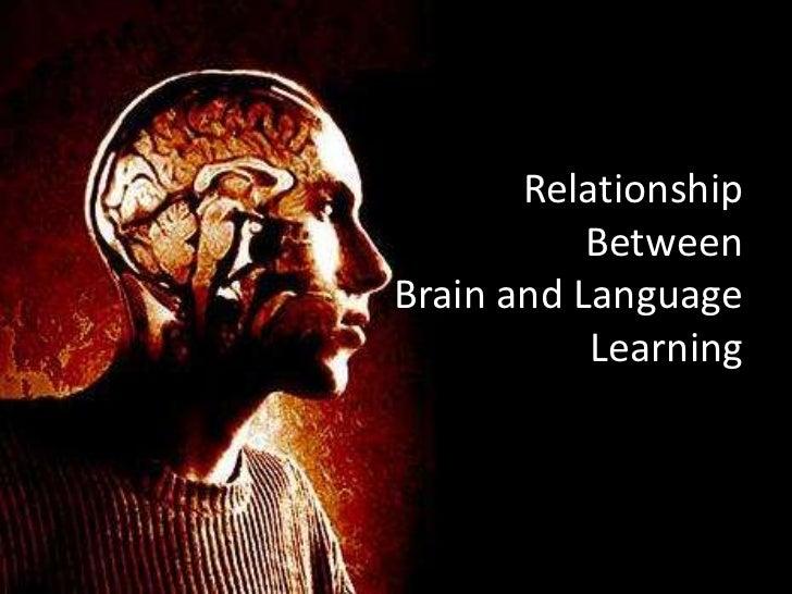 relationship between brain and language pdf