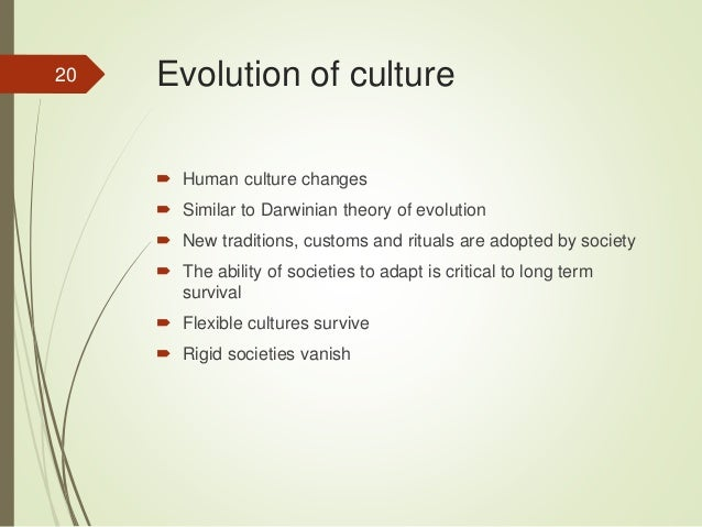 relationship between culture society and development