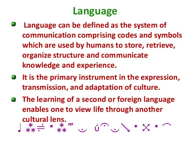 language and culture relationship essay free