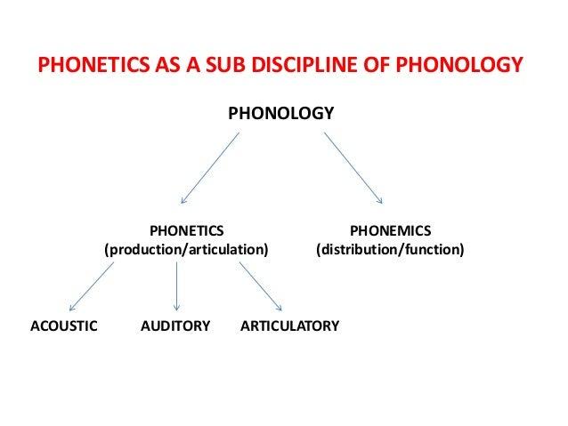 relationship between phonetics and phonemics