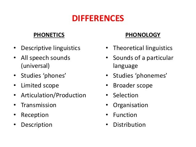 similarities between phonology and phonetics