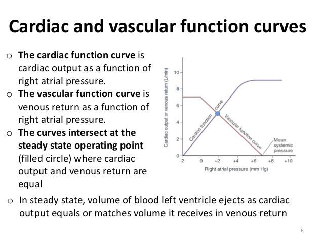 venous return and cardiac output relationship quiz