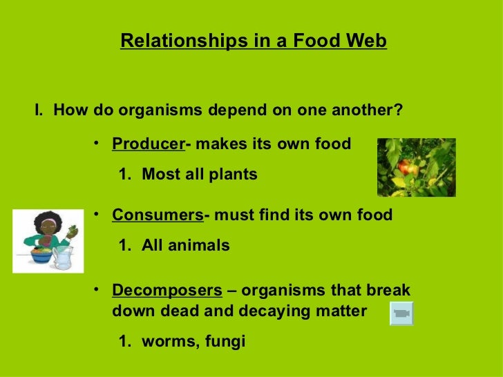 Relationships in a Food Web I.  How do organisms depend on one another? <ul><li>Producer - makes its own food </li></ul><u...