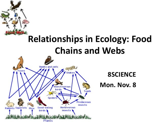 Relationships in Ecology: Food Chains and Webs 8SCIENCE Mon. Nov. 8