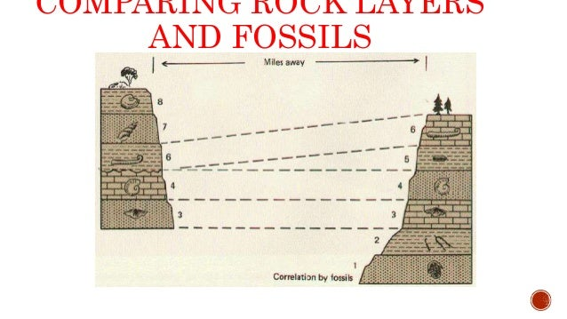 relative dating a fossil