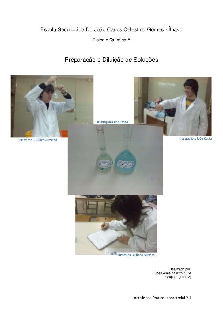Escola Secundária Dr. João Carlos Celestino Gomes - Ílhavo<br />Física e Química A<br />Preparação e Diluição de Solucões<...