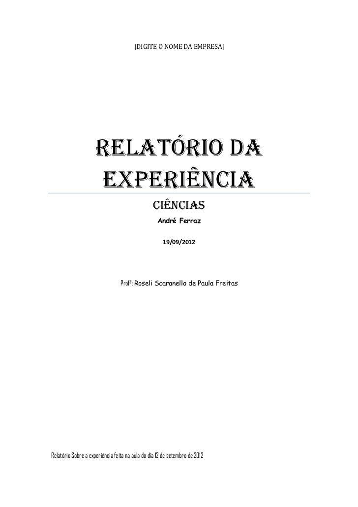 [DIGITE O NOME DA EMPRESA]                     RELATÓRIO DA                     EXPERIÊNCIA                               ...