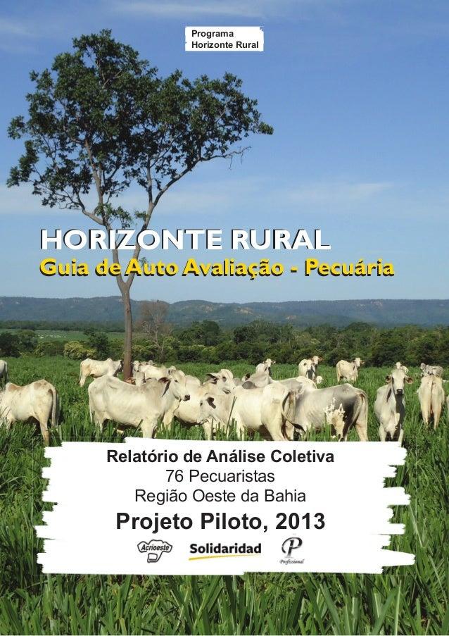 1 Guia de Auto Avaliação - Pecuária HORIZONTE RURAL Guia de Auto Avaliação - Pecuária HORIZONTE RURAL Relatório de Análise...