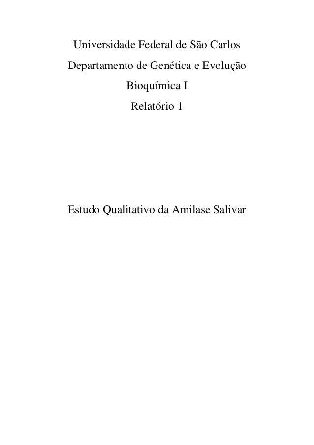 Universidade Federal de São Carlos Departamento de Genética e Evolução Bioquímica I Relatório 1 Estudo Qualitativo da Amil...
