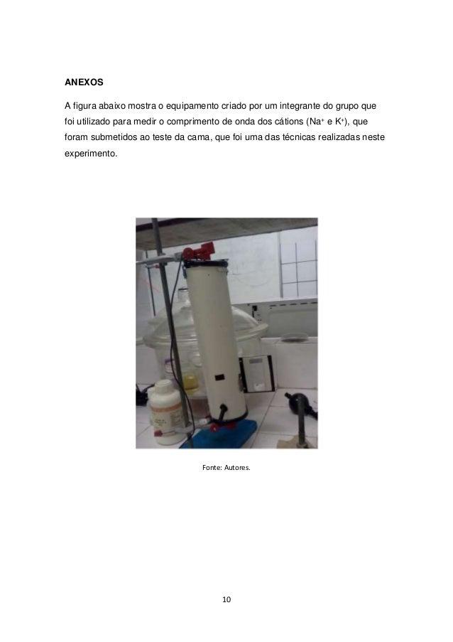 10  ANEXOS  A figura abaixo mostra o equipamento criado por um integrante do grupo que  foi utilizado para medir o comprim...