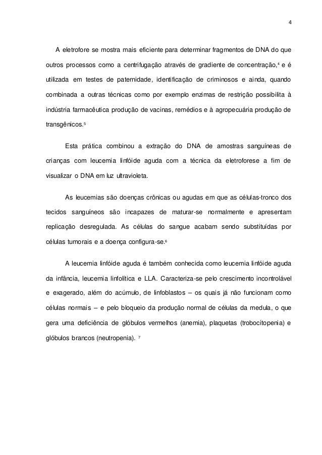 Relat 243 Rio Extra 231 227 O De Dna E Eletroforese