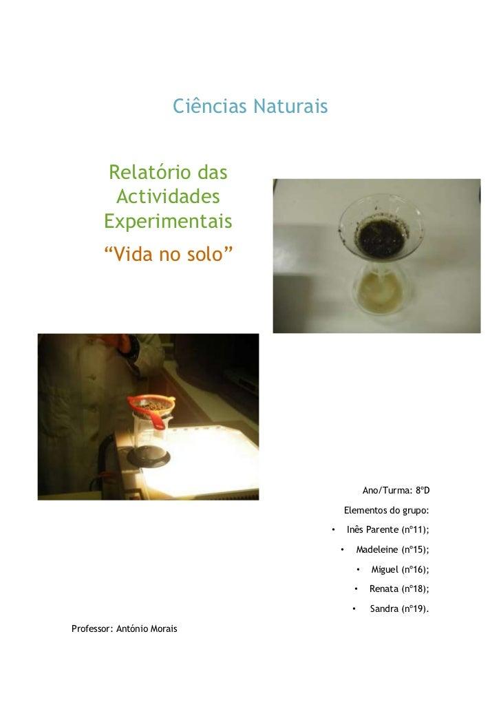 """Ciências Naturais<br />Relatório das Actividades Experimentais<br />""""Vida no solo""""<br />Ano/Turma: 8ºD<br />Elementos do g..."""