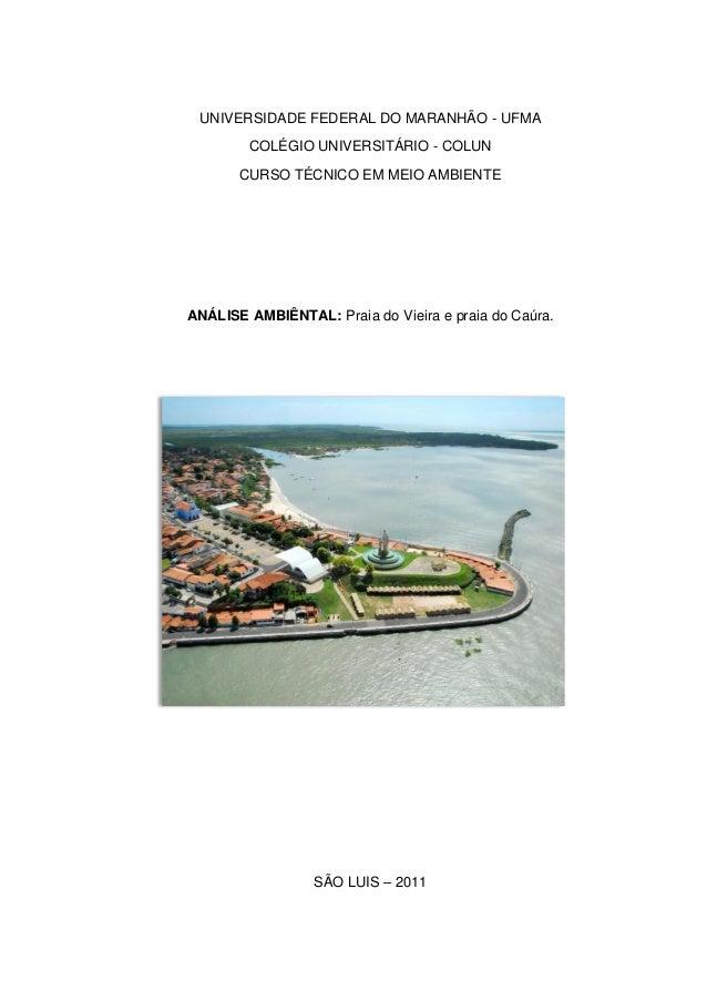 UNIVERSIDADE FEDERAL DO MARANHÃO - UFMA COLÉGIO UNIVERSITÁRIO - COLUN CURSO TÉCNICO EM MEIO AMBIENTE ANÁLISE AMBIÊNTAL: Pr...