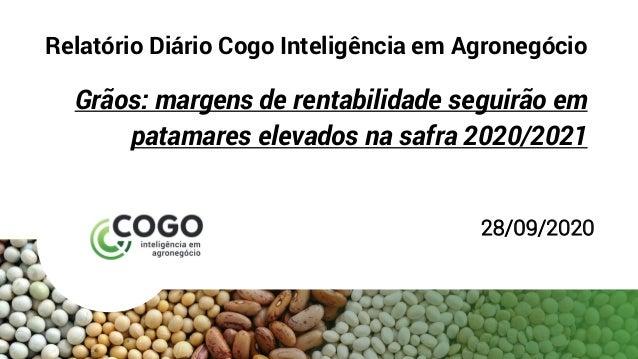 Relatório Diário Cogo Inteligência em Agronegócio Grãos: margens de rentabilidade seguirão em patamares elevados na safra ...