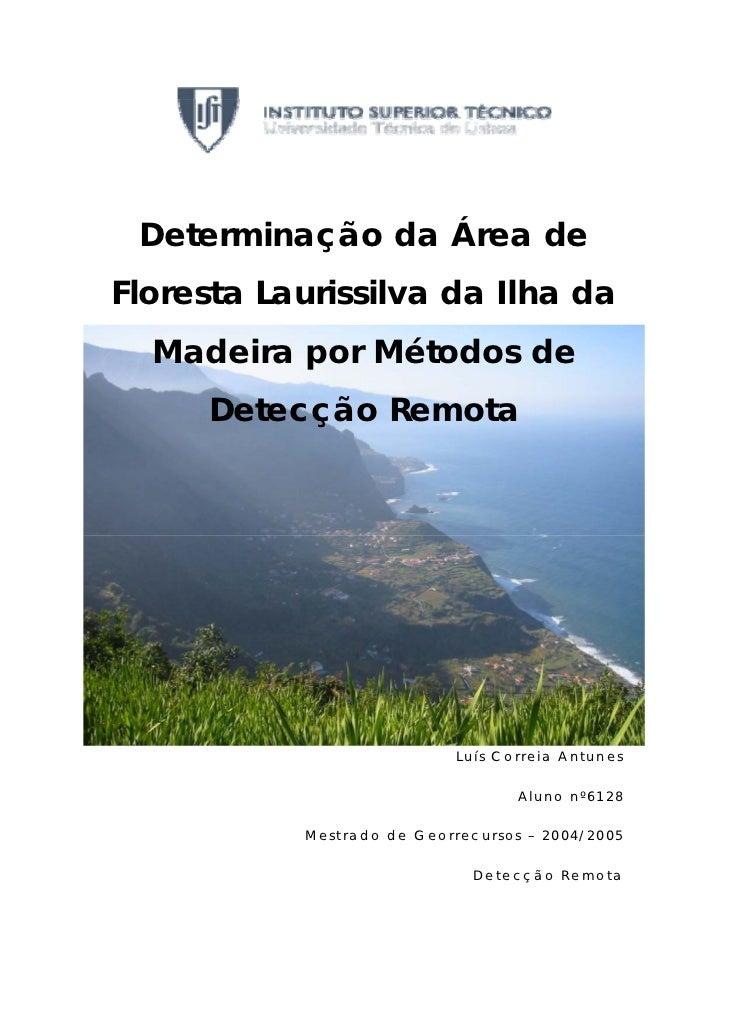 Determinação da Área deFloresta Laurissilva da Ilha da  Madeira por Métodos de     Detecção Remota                        ...
