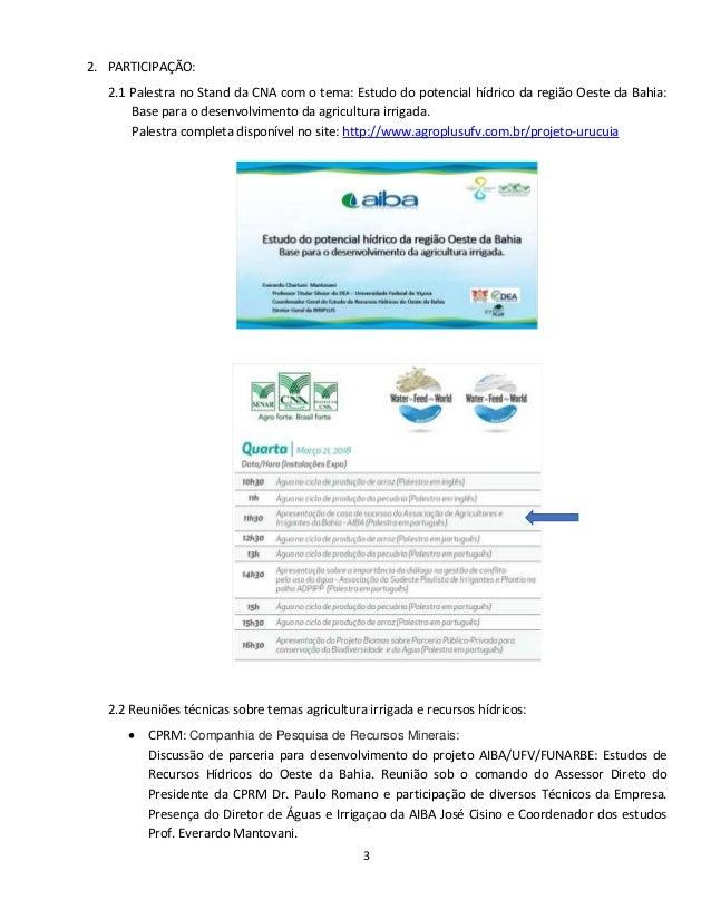 Relatório Participação 8. Forum Mundial da Água Slide 3