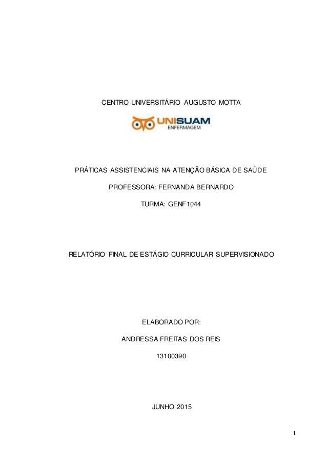 1 CENTRO UNIVERSITÁRIO AUGUSTO MOTTA PRÁTICAS ASSISTENCIAIS NA ATENÇÃO BÁSICA DE SAÚDE PROFESSORA: FERNANDA BERNARDO TURMA...