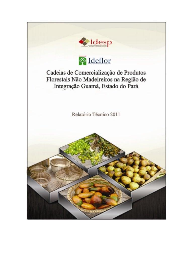 Cadeias de Comercialização de Produtos Florestais NãoMadeireiros na Região de Integração Guamá, Estado do                 ...