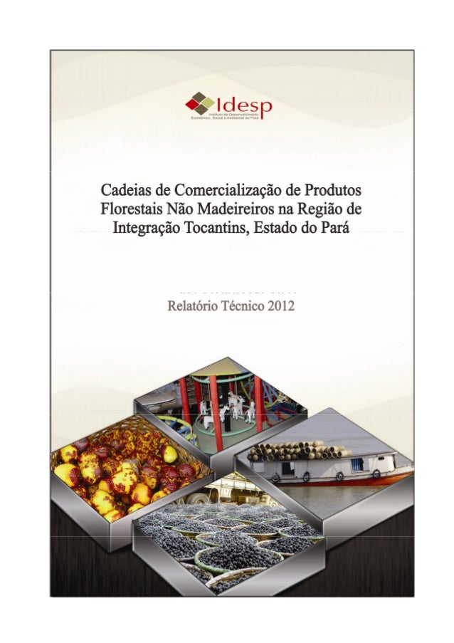 Cadeias de Comercialização de Produtos Florestais NãoMadeireiros na Região de Integração Tocantins, Estado do             ...