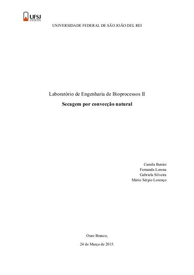 UNIVERSIDADE FEDERAL DE SÃO JOÃO DEL REI Laboratório de Engenharia de Bioprocessos II Secagem por convecção natural Camila...