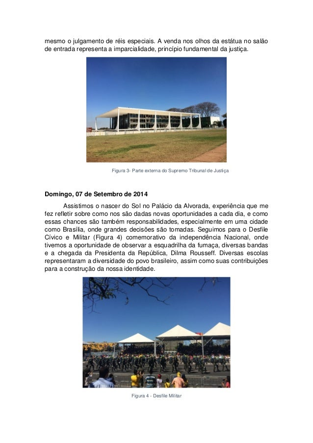 Cidade Constitucional: Relatório de Marina Briant Slide 3