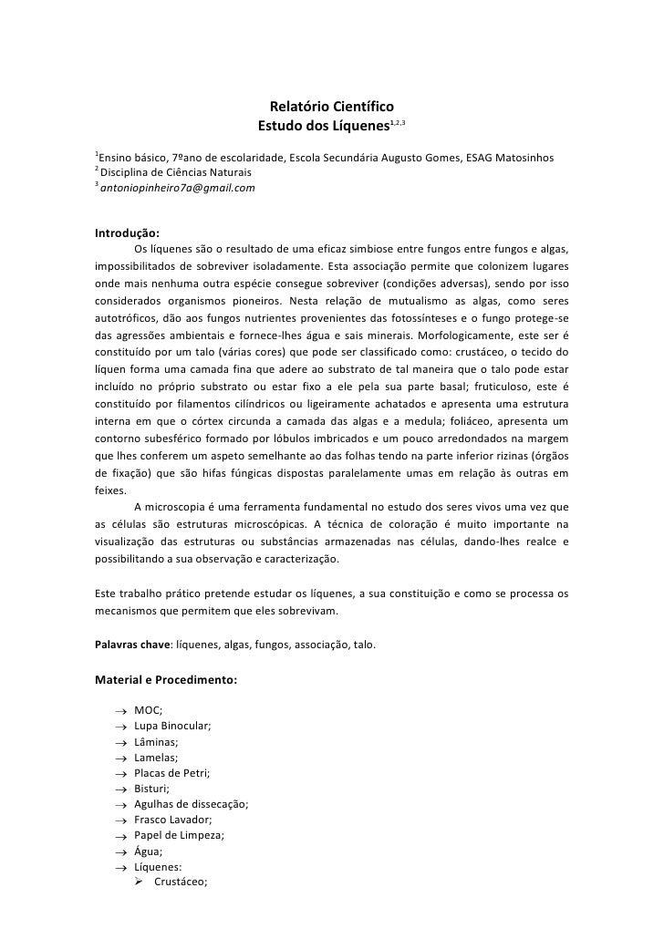 Modelo de relatorio de pesquisa