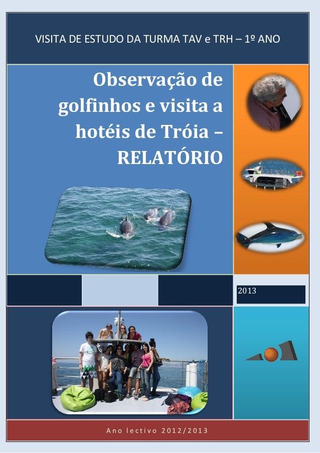 A n o l e c t i v o 2 0 1 2 / 2 0 1 3 2013 Observação de golfinhos e visita a hotéis de Tróia – RELATÓRIO VISITA DE ESTUDO...