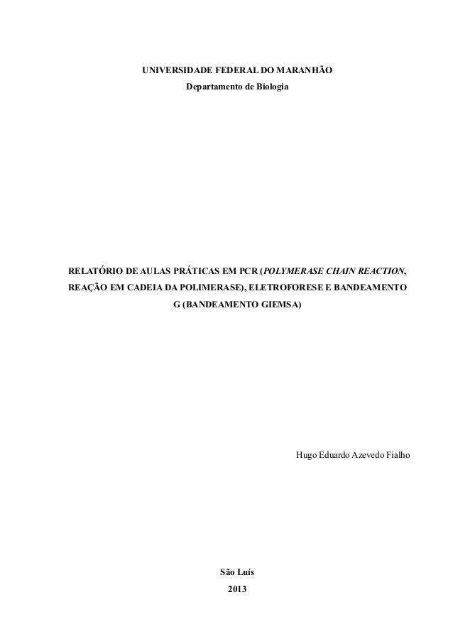 UNIVERSIDADE FEDERAL DO MARANHÃO Departamento de Biologia RELATÓRIO DE AULAS PRÁTICAS EM PCR (POLYMERASE CHAIN REACTION, R...