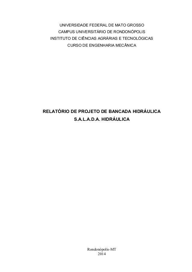 UNIVERSIDADE FEDERAL DE MATO GROSSO  CAMPUS UNIVERSITÁRIO DE RONDONÓPOLIS  INSTITUTO DE CIÊNCIAS AGRÁRIAS E TECNOLÓGICAS  ...