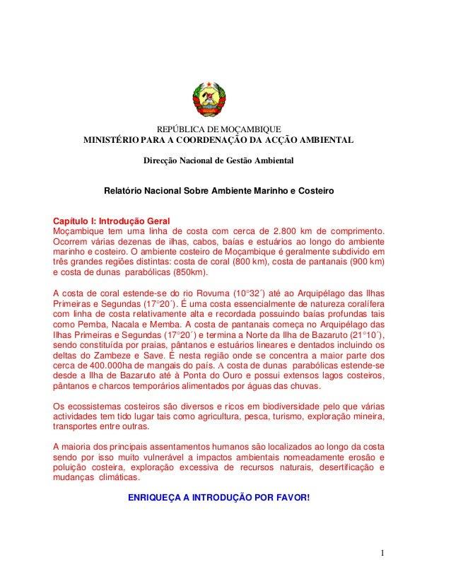 REPÚBLICA DE MOÇAMBIQUE MINISTÉRIO PARA A COORDENAÇÃO DA ACÇÃO AMBIENTAL Direcção Nacional de Gestão Ambiental Relatório N...