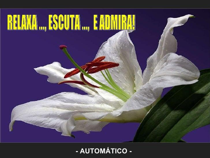Relaxa, escuta e_admira