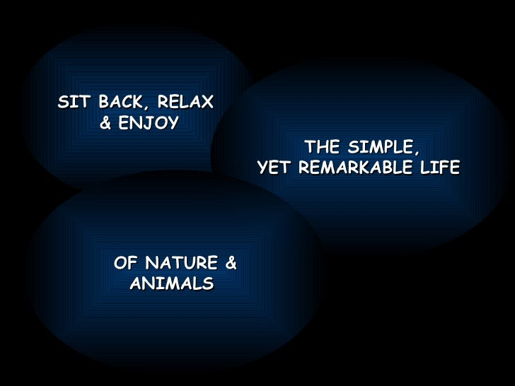 SIT BACK, RELAX  & ENJOY THE SIMPLE, YET REMARKABLE LIFE  OF NATURE & ANIMALS