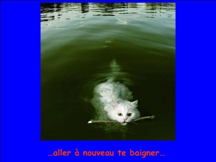 … aller à nouveau te baigner…