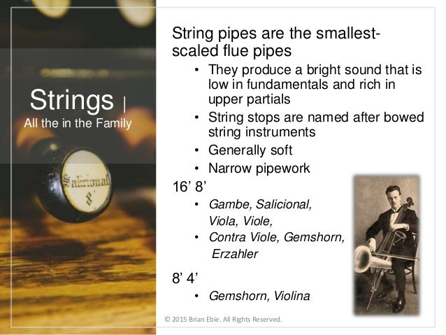 String pipes are the smallest- scaled flue pipes • They produce a bright sound that is low in fundamentals and rich in upp...