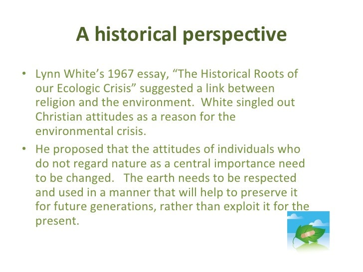 what the individual can do to help protect the environment essay  what the individual can do to help protect the environment essay