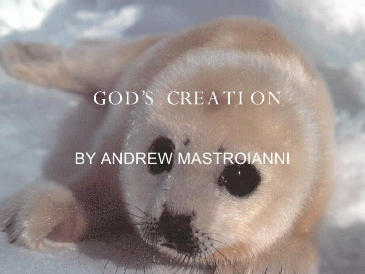 GOD'S CREATION BY ANDREW MASTROIANNI