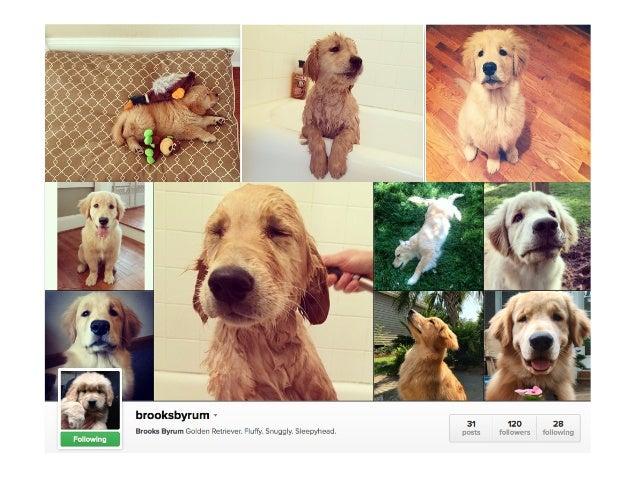 The Power of Pinterest & Instagram for Real Estate Slide 3