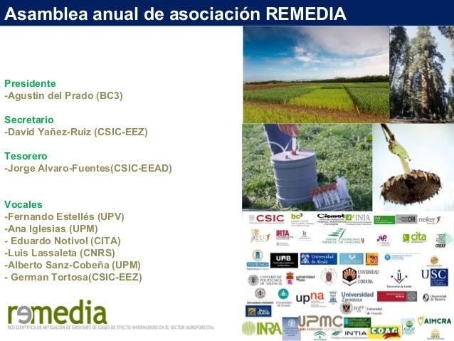 Asamblea anual de asociación REMEDIA Presidente -Agustin del Prado (BC3) Secretario -David Yañez-Ruiz (CSIC-EEZ) Tesorero ...