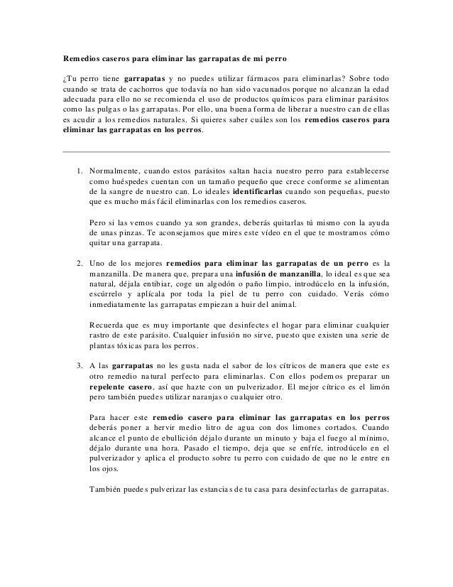 COMO ELIMINAR CUALQUIER PULGA PERRO GATO | SOLUCION …