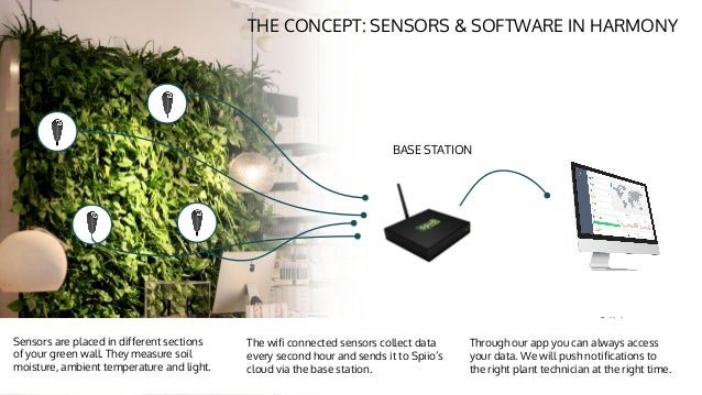spiio remote monitoring of living walls by martin dal - Walls By Design