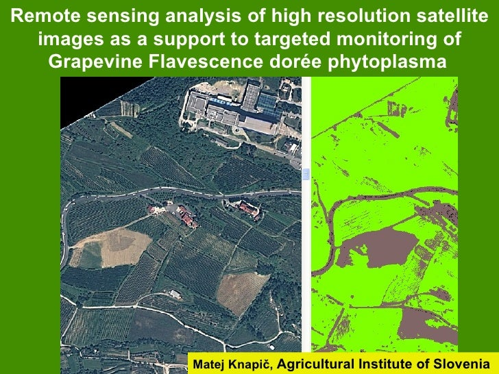 Remote sensing analysis of high resolution satellite  images as a support to targeted monitoring of   Grapevine Flavescenc...