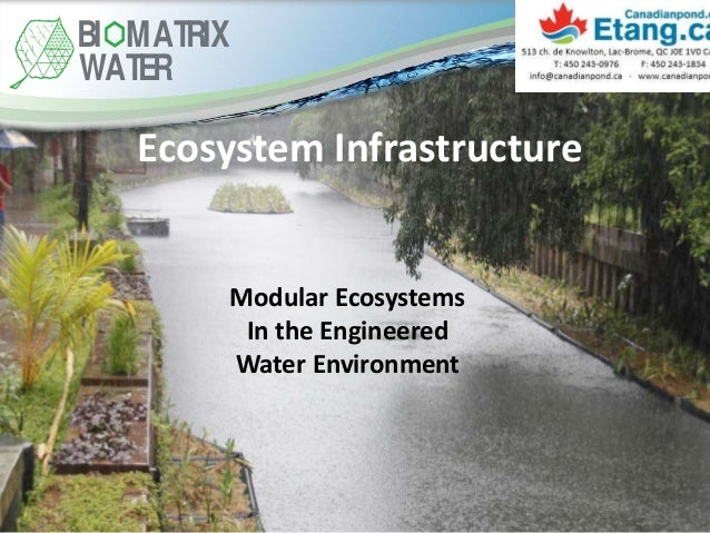 Ecosystem Infrastructure Modular Ecosystems In the Engineered Water Environment BI MATRIX WATER