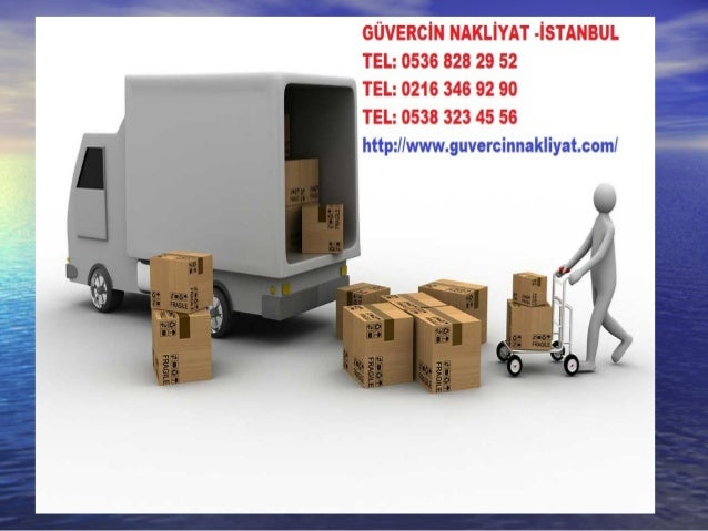 The RemovalsThe Removals