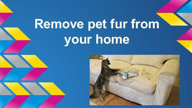 Remove pet fur from your home