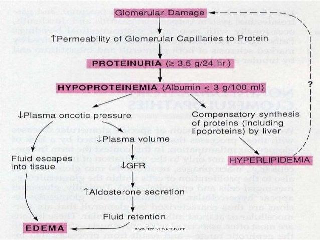 steroid resistant fsgs